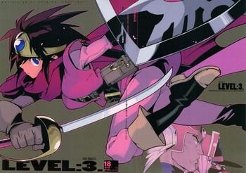 level 3 cover